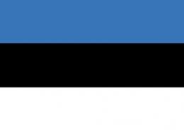 estonya vizesi basvurusu islemleri bilgi