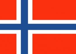 norvec vizesi basvurusu islemleri bilgi