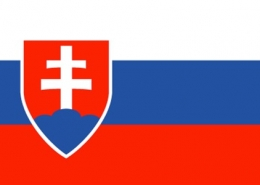 slovakya vizesi