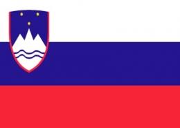 slovenya vizesi basvurusu islemleri bilgi