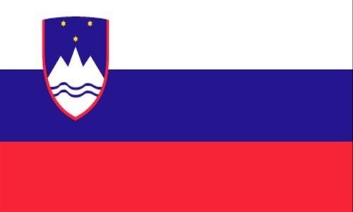 slovenya vizesi